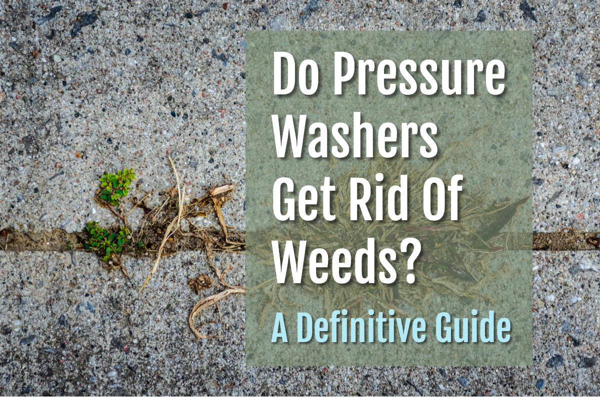 Title image of a weed growing from a crack for a do pressure washers get rid of weeds post